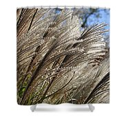 Brushes Of Autumn  Shower Curtain