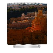 Bryce 41 Shower Curtain