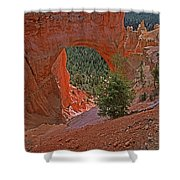 Bryce Canyon Natural Bridge And Tree Shower Curtain