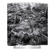 Bubbling Water Brook In The Smokies Shower Curtain