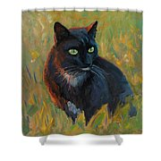Bubu In The Sunset Shower Curtain