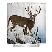 Buck At Waters Edge Shower Curtain