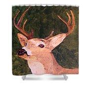 Buck Portrait Shower Curtain