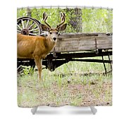 Buck Wagon Shower Curtain