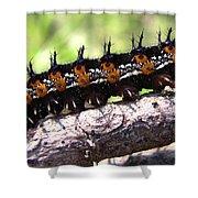 Buckeye Caterpillar 2 Shower Curtain