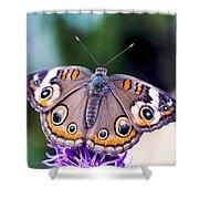 Buckeye II Shower Curtain