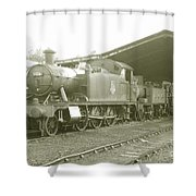 Buckfastleigh Shed Shower Curtain