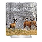 Bucks Abound Shower Curtain