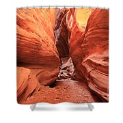 Buckskin Bulge Shower Curtain