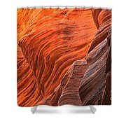 Buckskin Walls Of Fire Shower Curtain