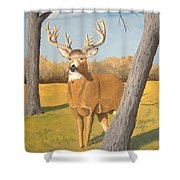 Bucky The Deer Shower Curtain