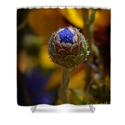 Bud Blooming Shower Curtain