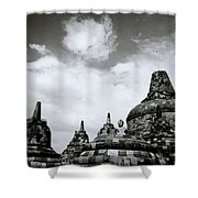 Buddha And Stupas Shower Curtain