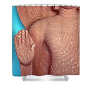 Buddha Carved Stone Statue With Halo Shower Curtain