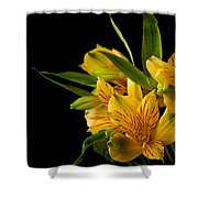 Budding Flowers Shower Curtain