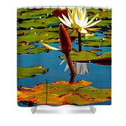 Budding Lilies Shower Curtain