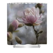 Budding Magnolia Branch Shower Curtain
