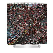 Budding Maple Tree Shower Curtain