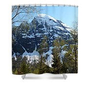 Buds And Glaciers  Shower Curtain