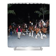 Budwiser Clidsdale Horses Shower Curtain
