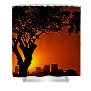 Buenos Aires At Sunset Shower Curtain