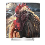 Buff Orpington Cockerel Shower Curtain