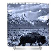 Buffalo And Mountain In Jackson Hole Shower Curtain