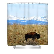Buffalo And The Rocky Mountains Shower Curtain