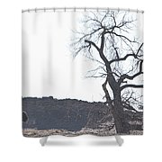 Buffalo Breath In The Winter Air Shower Curtain