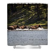 Buffalo Crossing - Yellowstone National Park - Wyoming Shower Curtain