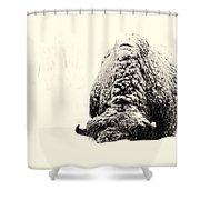 Buffalo Hump Shower Curtain