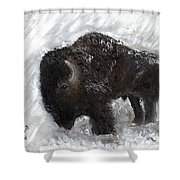 Buffalo In The Snow Shower Curtain