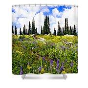 Buffalo Pass Colorado Wildflowers Shower Curtain