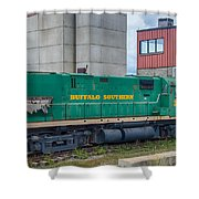 Buffalo Southern 2010 Shower Curtain