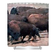 Buffalo Stampede Shower Curtain