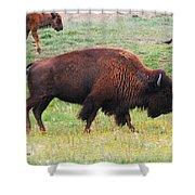 Buffalo Mom Shower Curtain