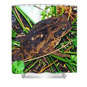 Bufo Toad Shower Curtain