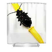 Bug On The Cob Shower Curtain