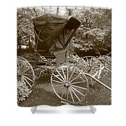 Buggy Sepia Shower Curtain