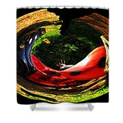 Bugs At The Zoo Lady Bug Shower Curtain