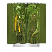 Bulbinella Latifolia Abstract Shower Curtain