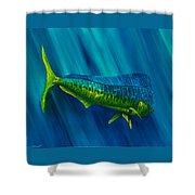 Bull Dolphin Shower Curtain