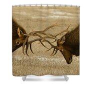 Bull Elk In The Rut   #8924 Shower Curtain