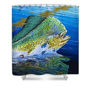 Bull Reflection Off0032 Shower Curtain