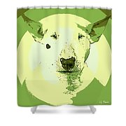 Bull Terrier Graphic 2 Shower Curtain