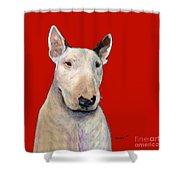 Bull Terrier On Red Shower Curtain