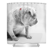 Bulldog 3 -  Featured In Comfortable Art Group Shower Curtain