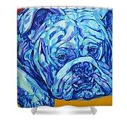 Bulldog Blues Shower Curtain