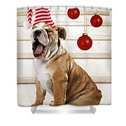 Holiday Bulldog Puppy  Shower Curtain
