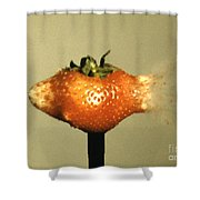 Bullet Piercing A Strawberry Shower Curtain